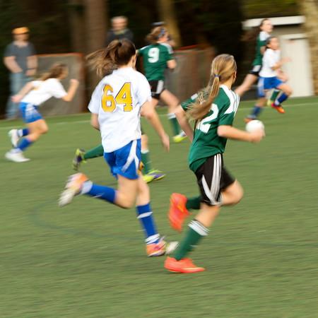 Lake Hills Extreme Soccer 1 25 15-2293