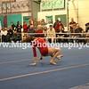 Action Sport Photos (4)