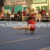 Action Sport Photos (10)