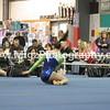 Gymnastics Photographer on Site (23)