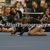 Gymnastics Event Photographer (22)