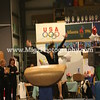 Pictures on site gymnastic event (12)