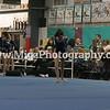 Gymnastic Photographer Buffalo NY (19)