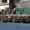 Gymnastic Photographer Buffalo NY (2)