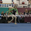 Orchard Park Gymnastics Action Sports Photos (2)