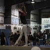 Action Photos Gymnastics (18)