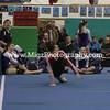 Gymnastcis Event Print on site (6)