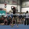 Gymnastcis Event Print on site (24)