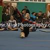 Gymnastcis Event Print on site (10)