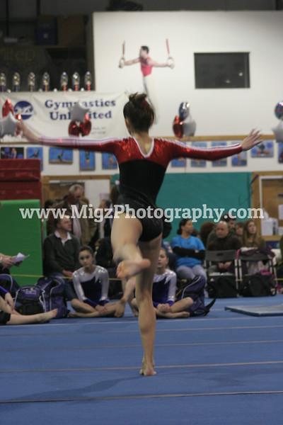 Gymnastcis Event Print on site (1)