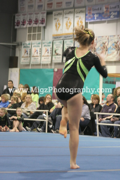 Gymnastics (1)