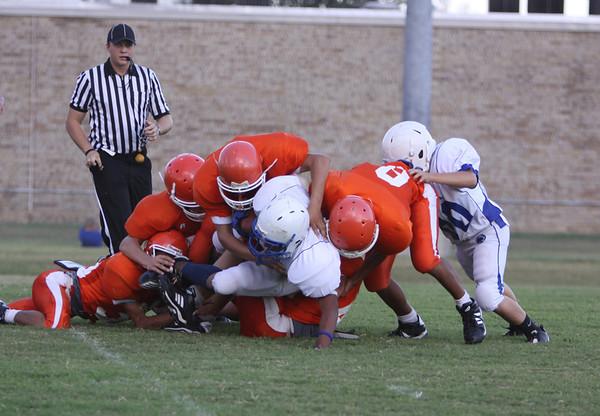 Sports 11-12