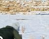 LI4_0267_RMC_QVNC Biathlon