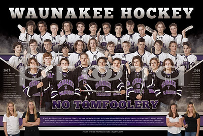 Waunakee Hockey