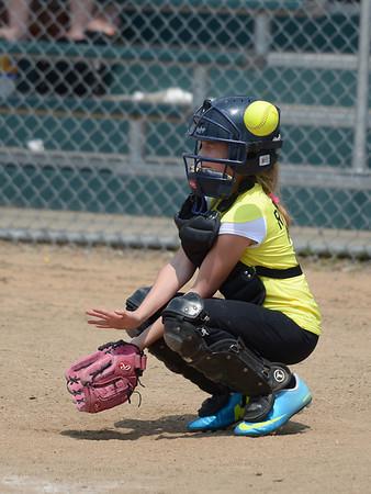 Bees Softball (102)
