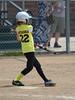 Bees Softball (19)