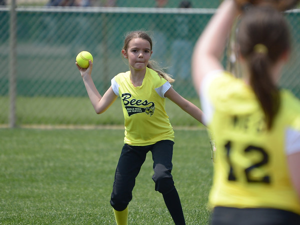 Bees Softball (91)