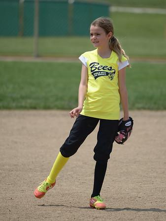 Bees Softball (13)
