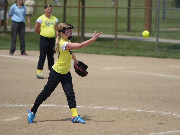 Bees Softball (16)