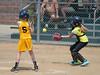 Bees Softball (44)