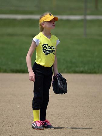 Bees Softball (35)
