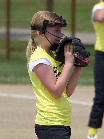 Bees Softball (137)