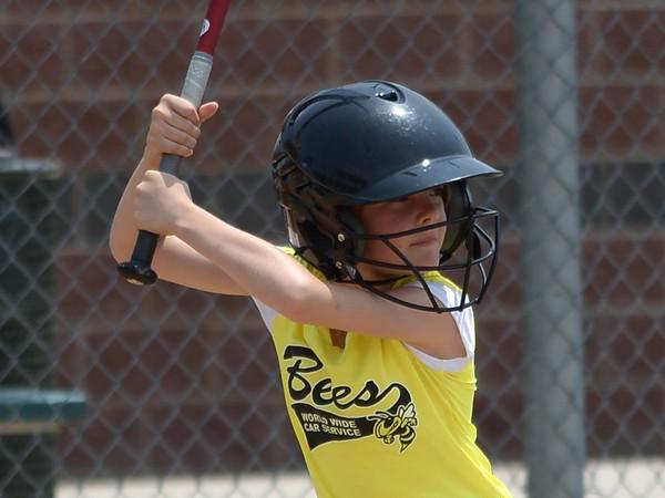Bees Softball (142)