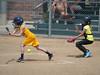 Bees Softball