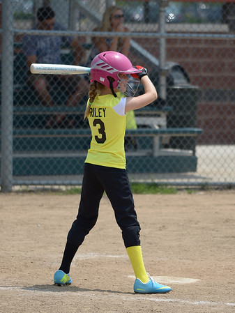 Bees Softball (87)