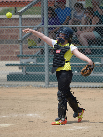 Bees Softball (27)