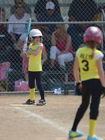 Bees Softball (115)