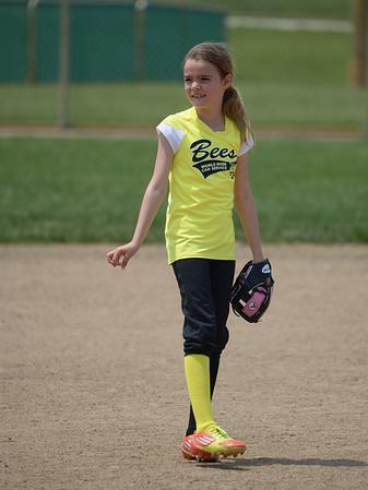 Bees Softball (14)