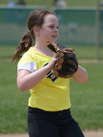 Bees Softball (127)