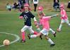 Pink Panthers (10)
