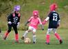 Pink Panthers (5)