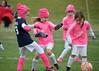 Pink Panthers (3)