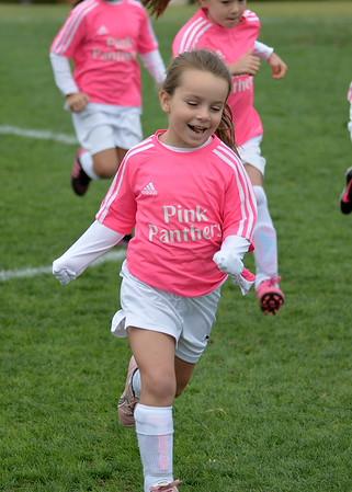 Pink Panthers (1)