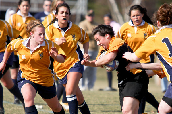 Rugby: Bryant v Bentley