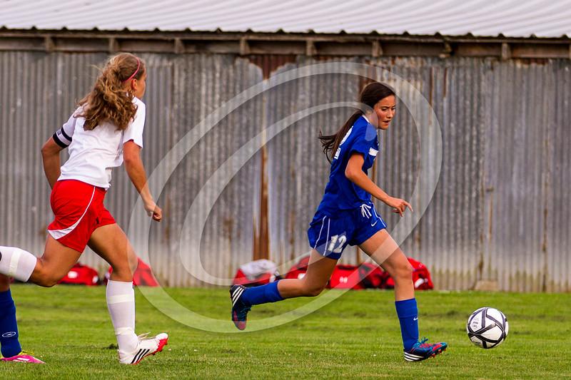soccer_girls_2014406