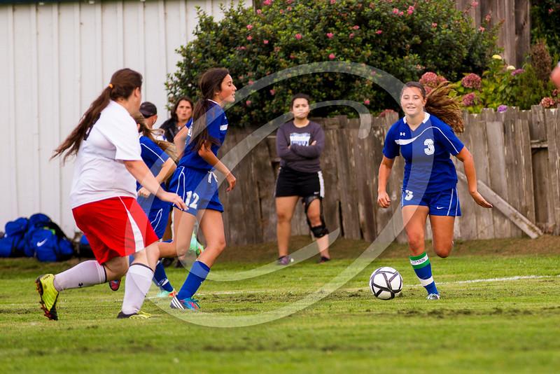 soccer_girls_2014376