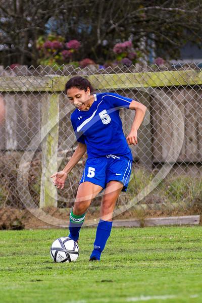 soccer_girls_2014409