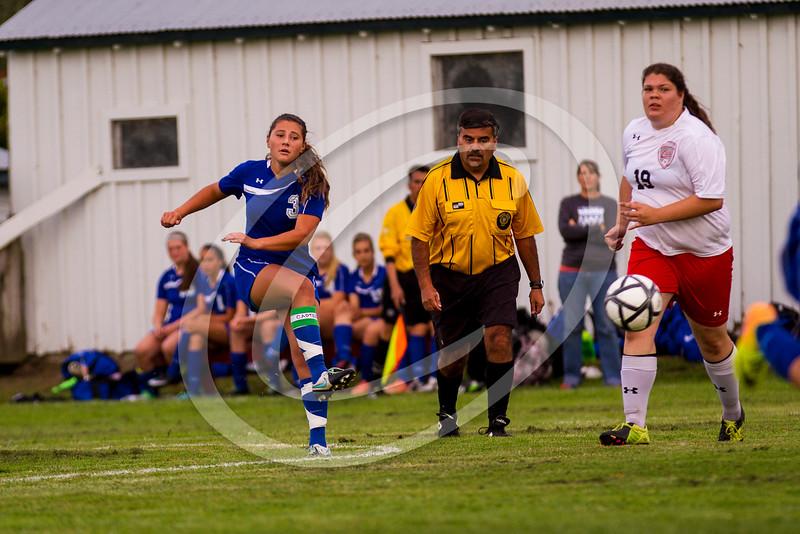soccer_girls_2014379