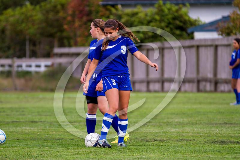 soccer_girls_2014363