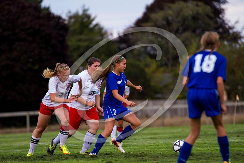 soccer_girls_2014395