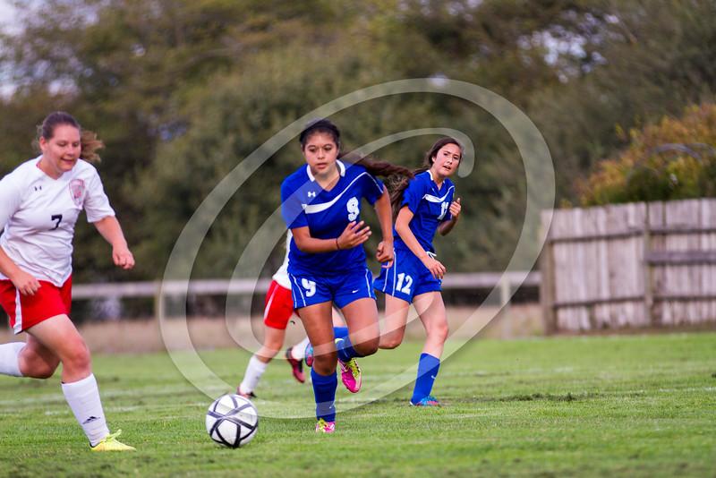 soccer_girls_2014416
