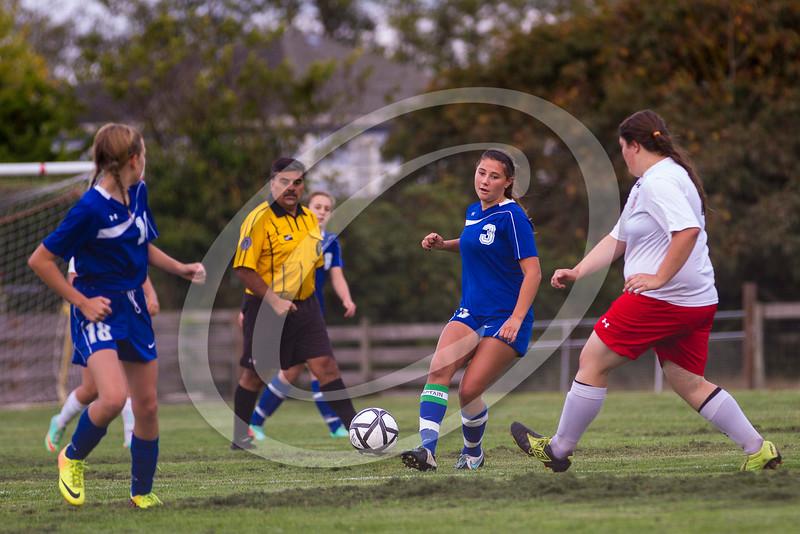 soccer_girls_2014365