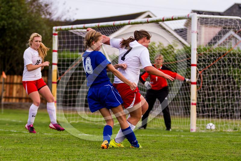soccer_girls_2014383