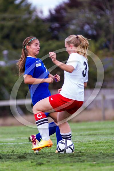 soccer_girls_2014390