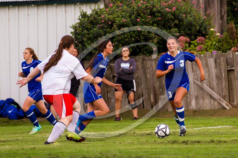 soccer_girls_2014377