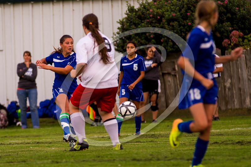 soccer_girls_2014370